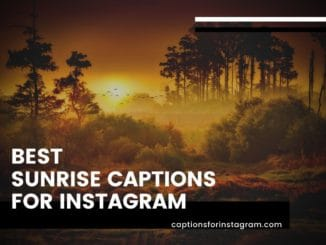 Best Sunrise Captions For Instagram