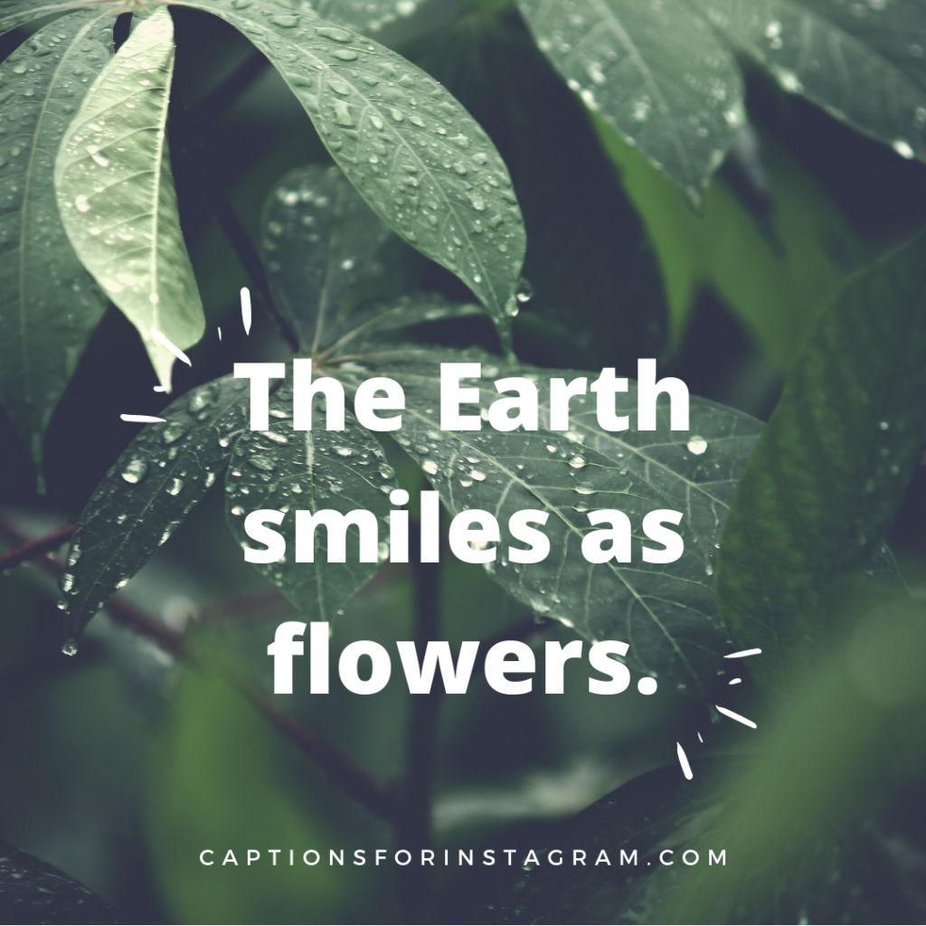 The Earth smiles as flowers - Best Instagram Caption For Nature Beauty