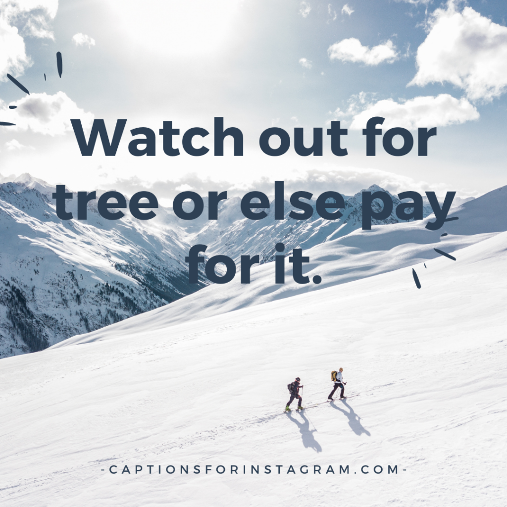 Watch out for tree or else pay for it.